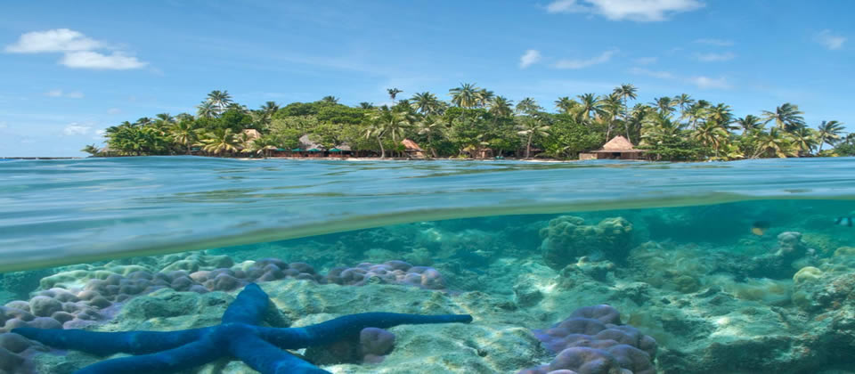 Exclusively Fiji Explore The Hidden Secrets Of Fiji